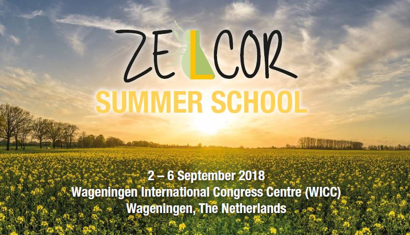 Ynsect will participate to Zelcor Summer School in September
